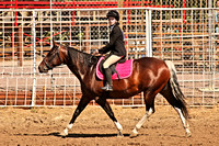 Horse Show and Sweetheart Horsemanship